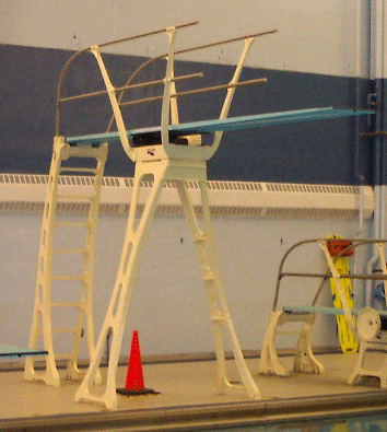Transition Check-In: Back to the Diving Board