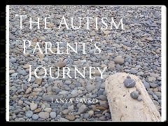 The Autism Parent's Journey